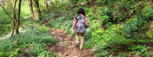 間質性肺炎とリハビリ登山